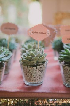 Succulents as wedding favors and place / escort cards. Fondly Forever Photo Venice, CA