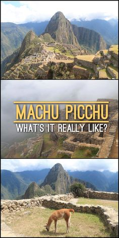 Are you planning a trip to Machu Picchu, Peru? Find out what it's really like to visit this wonder of the world, from transport to tips on getting there before the crazy crowds.