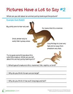 Second Grade Science Comprehension Life Science Plants, Animals & the Earth Reading Worksheets: Pictures Have a Lot to Say: Big Ears