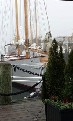 At the dock in Newport, Rhode Island