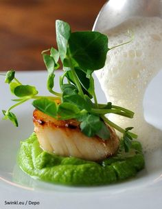 Scallops, pea purée, shoots and cumin foam Scallops. shoots and cumin foam – Chris Horridge – This recipe is a sure way to wow at any dinner party. Appetizers For A Crowd, Seafood Appetizers, Appetizer Recipes, Seafood Platter, Party Appetizers, Fish Recipes, Seafood Recipes, Gourmet Recipes, Healthy Recipes