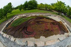 des-sculptures-vegetales-monumentales-installees-dans-les-jardins-de-montreal6