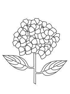 Printable Flower Coloring Pages, Coloring Pages For Kids, Hydrangea, Ceiling Lights, Shapes, Purple, Pendant, Drawings, Flowers