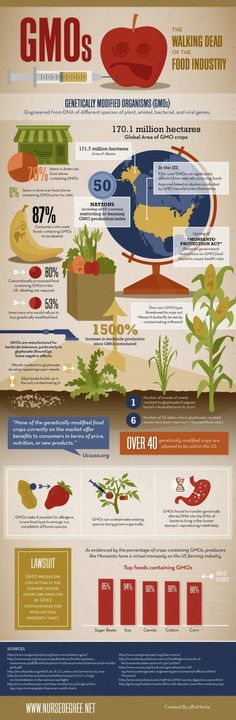 A Reminder That GMOs Are Terrible (Infographic) | A life of quality!