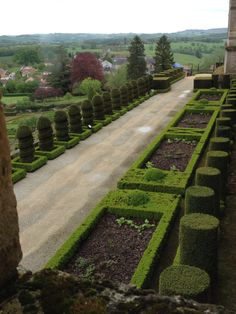Topiary hedging