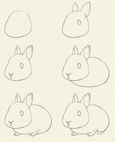 How to draw bunny. Learn to draw a cute bunny step by step images . Drawing Tips how to draw a bunny Drawing Lessons, Drawing Techniques, Art Lessons, Drawing Tips, Drawing Ideas, Art Drawings Sketches, Animal Drawings, Easy Drawings, Easy Sketches To Draw