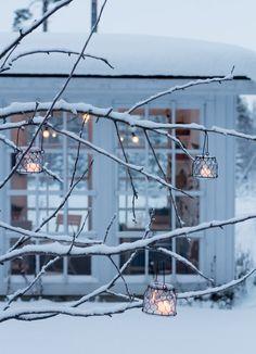 winter wonderland~
