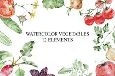 Set of watercolor vegetables by IvanFet on @creativemarket