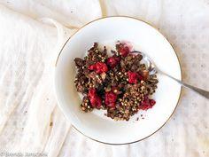 Chocolate Crunch Granola | Brenda Janschek Health & Lifestyle