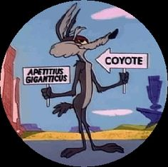 Wile E Coyote Quotes. Looney Tunes Characters, Classic Cartoon Characters, Looney Tunes Cartoons, Cartoon Jokes, Old Cartoons, Cartoon Tv, Classic Cartoons, Cartoon Shows, Funny Cartoons