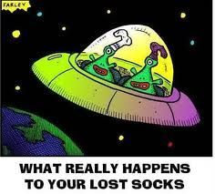 So that's what happens to all my socks. I knew it! Lost Socks, My Socks, What Really Happened, Comebacks, Lol, Shit Happens, Humor, This Or That Questions, Ice Cream
