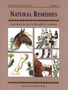 Threshold Picture Guide No. 35 Natural Remedies by Chris Day | Quiller…