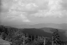 Storm Over Clingman's Dome
