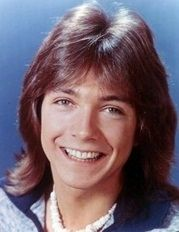 David Cassidy...The Partridge Family