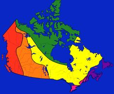 six physical regions of Canada are: The Atlantic, The Great Canadian Shield, The Arctic, The Plains, The Cordillera and the Great Lakes St. These six regions are very different from each other Social Studies Communities, Social Studies Activities, Teaching Social Studies, Geography Of Canada, Canadian Social Studies, Geography Lessons, Canadian History, Study History, Biomes