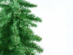 green christmas tree border