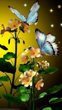 Find images and videos about flowers and butterfly on We Heart It - the app to get lost in what you love. Flower Phone Wallpaper, Butterfly Wallpaper, Nature Wallpaper, Wallpaper Backgrounds, Iphone Wallpaper, Beautiful Flowers Wallpapers, Beautiful Butterflies, Beautiful Birds, Cute Wallpapers