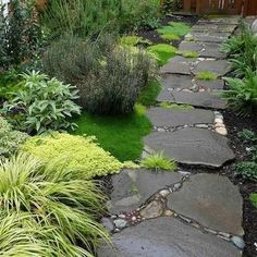 Mortar and Pebble  These large stepping stones are made up of stones bound together by mortar and pebbles. With moss and other plant  life allowed to grow in between, this path has a very eclectic and natural feel.: