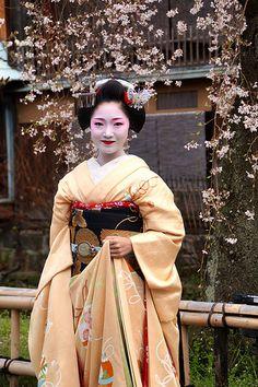 京都の花(とし夏菜さん) | Flickr - Photo Sharing!