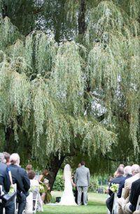 22 Best Chetola Wedding Venue Images Renewal Wedding Wedding