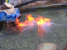 JAMAICA FIRE WATER: Located at the end of a looping dirt road just outside of the Runaway Bay roundabout in St. Ann, Firewater pond is said to be one of Jamaica's best-kept local secrets. Housed in a makeshift bath area, the pond contains natural gases which create floating flames on top of jacuzzi-like, bubbling waters when lit. (I would like to see this when we go back)