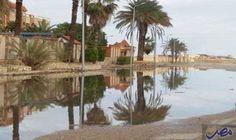 شمال سيناء تشهد موجة من الأمطار الغزيرة…: شهدت مدن محافظة شمال سيناء سقوط موجة من الأمطار الغزيرة، وإنخفاض كبير في درجات الحرارة والي موجه…