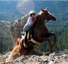 endurance trail riding such skill