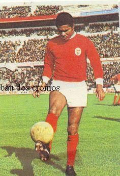 O BAÚ DOS CROMOS Football Stickers, Football Cards, Football Soccer, Football Players, Baseball Cards, Soccer Stars, Eagles, Portugal, Professional Football