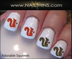 Hey, I found this really awesome Etsy listing at https://www.etsy.com/listing/160321828/squirrel-nail-decal-squirrels-in-red-and