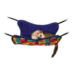 Ferret Hammock With Fleece Lining  $19.35