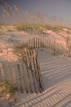 Evening At Orange Beach, Alabama (By Maria Suhr)