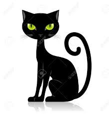 Afbeeldingsresultaat voor gato rabisco png