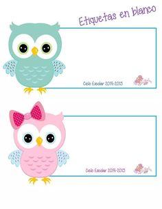 Owl Labels, Kids Labels, Owl Theme Classroom, Classroom Walls, Imagenes My Little Pony, Kids Background, Bird Applique, School Labels, Bird Crafts