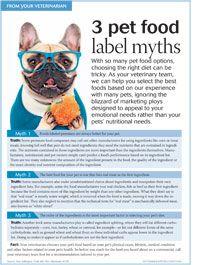 Veterinary nutrition: Easy as 3 Dog Nutrition, Animal Nutrition, Vet Tech Student, Pet O, Dog Ages, Vet Med, Vet Clinics, Veterinary Technician, Pet Health