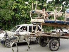 Donkey cart loaded with benches seen in Lahore. PHOTO: INP