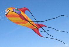 Gomberg knows kites