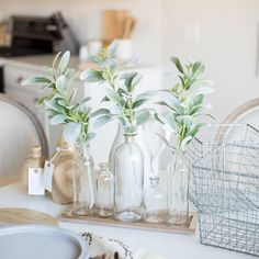 Accent decor; glass bottle set, wire baskets, wood tray, cement platter, and wood vases by PCB Home