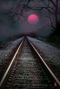 Into The Night Your path is always straight ahead of you and under your feet. Every step you take is part of your path, good or bad it is your experiences that make up the path.
