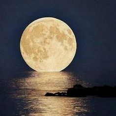Moon in Florida  ~ Full Moon parties along the beaches are popular here, held privately or at clubs and hotels.