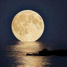 Moon in Florida