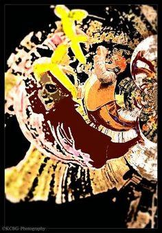 My September 2014 cover shot for Zen Dixie Magazine. http://www.zendixie.com/
