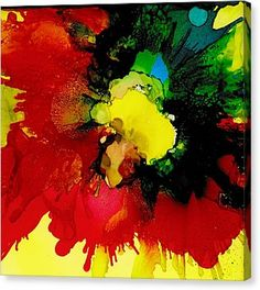 Colour Explosion Canvas Print by Louise Adams