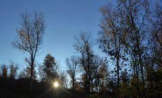 Il momento in cui sorse il sole. Zuoli Wood. Omegna, 12-11-2017.