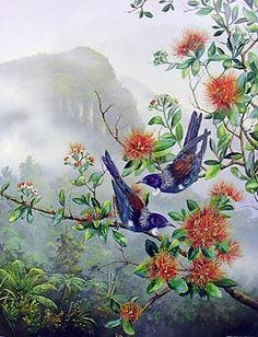 Check out Tui on Rata by Jeanette Blackburn at New Zealand Fine Prints