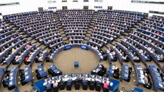 Moscow Should Drop Council of Europe Membership-Suggested By Russian Lawmaker Council Of Europe, Filter, Western Sahara, Spiegel Online, Internet, Valencia, Greece, Bond, Moscow