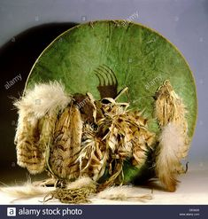 Crow shield made from tough shrunken buffalo skin Stock Photo: 60306016 - Alamy Native American Artwork, Native American Artifacts, Crow Photos, War Bonnet, Plains Indians, Indian Artifacts, Bead Loom Bracelets, Indigenous Art, First Nations