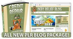 http://debtrelief.digimkts.com    So glad I called  Worth a call : 866-232-9476  Debt Relief Niche PLR Blog Pakcage for hosted WordPress with matching PLR Ebook Package.
