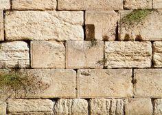 EndrTimes: JESUS AND THE WAILING WALL