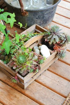 Accessory to go along with the mini garden on the porch.