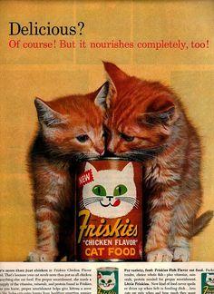 Vintage cat food advert